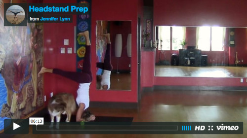Headstand-Prep