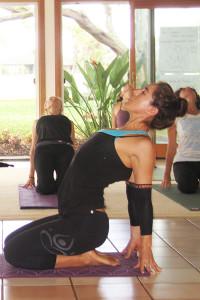 Maui Yoga Teacher Training January 2020 Wisdom Flow Yoga Joyful Movement On Maui Hawaii
